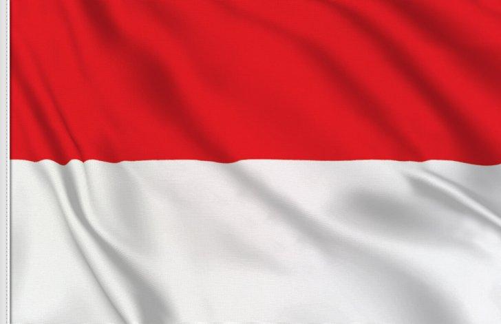 وزير الاقتصاد الإندونيسي: أجرينا أول تجربة طيران باستخدام وقود الطائرات المخلوط بزيت النخيل