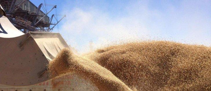 إيران تطرح مناقصة لشراء 60 ألف طن من القمح